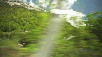 um trem passando por uma linha de árvores video