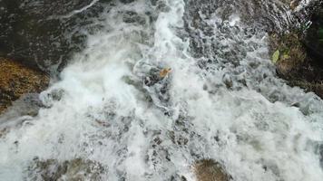 Flowing water in mountain river between stones