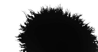 Gotas de tinta negra que se expanden creando una forma ovalada con líneas finas en 4k