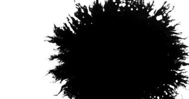 Gotas de tinta negra que se expanden con venas delgadas que llenan la escena desde el lado derecho en 4k