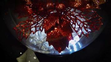 Escena oscura de flor roja y luces en esfera navideña.