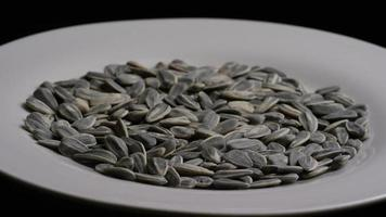 ripresa cinematografica e rotante di semi di girasole su una superficie bianca - semi di girasole 016 video
