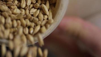 filmagem em câmera lenta de suprimentos e processos de fabricação de cerveja em casa - fabricação de cerveja 012