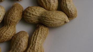 tiro cinematográfico giratório de amendoim em uma superfície branca - amendoim 005
