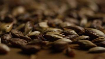 dose rotativa de cevada e outros ingredientes de fabricação de cerveja - fabricação de cerveja 110
