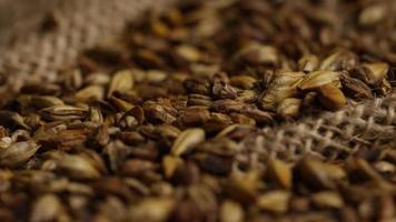dose rotativa de cevada e outros ingredientes de fabricação de cerveja - fabricação de cerveja 244