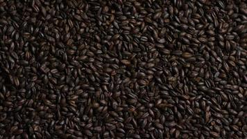 dose rotativa de cevada e outros ingredientes de fabricação de cerveja - fabricação de cerveja 164