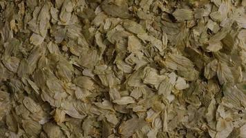 dose rotativa de cevada e outros ingredientes de fabricação de cerveja - fabricação de cerveja 290