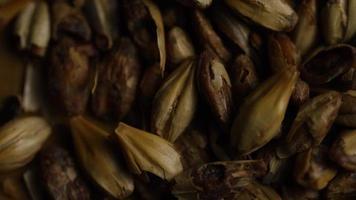 dose rotativa de cevada e outros ingredientes de fabricação de cerveja - fabricação de cerveja 076