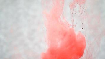 tinta vermelha na água. câmera lenta criativa. em um fundo branco video