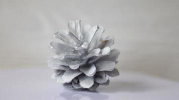 pigna dipinta di bianco