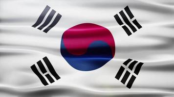 Südkorea Flag Schleife video