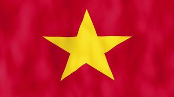 Vietnam Flag Waving
