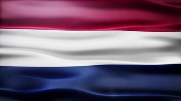 boucle de drapeau des Pays-Bas video