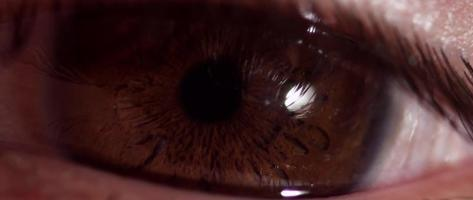 Extreme close up of human eye with brown iris changing size of the pupil in 4K video