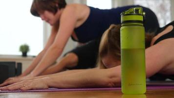 mujeres en primer plano haciendo posición de yoga en el estudio | material de archivo gratis video