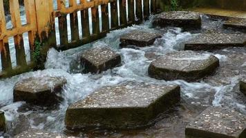 Stones Step in the Water