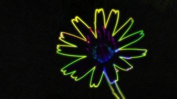 lazo de flor de neón brillante