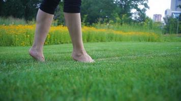 Frauenbeine im Gras