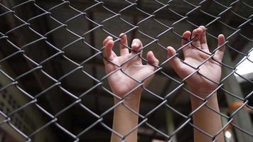 as mãos das crianças na cerca de ferro.