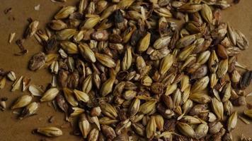 dose rotativa de cevada e outros ingredientes de fabricação de cerveja - fabricação de cerveja 070