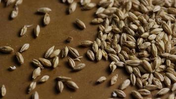 dose rotativa de cevada e outros ingredientes de fabricação de cerveja - fabricação de cerveja 139