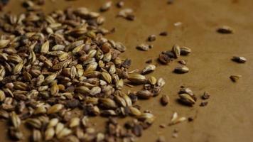 dose rotativa de cevada e outros ingredientes de fabricação de cerveja - fabricação de cerveja 088