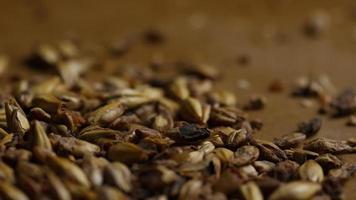 dose rotativa de cevada e outros ingredientes de fabricação de cerveja - fabricação de cerveja 089