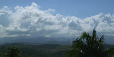 Timelapse of green hills with big clouds in sky and palm trees in foreground in 4K