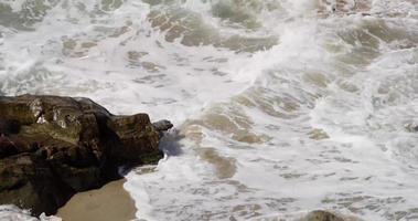colpo statico delle onde del mare che colpiscono una roccia sulla spiaggia video