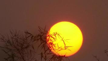 solen stiger på morgonen video