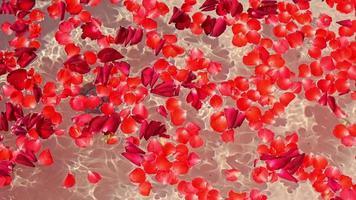 pétalas de rosa em uma banheira