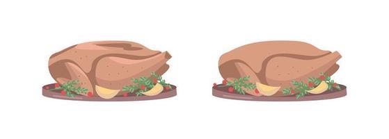 Roasted turkey vector object set
