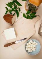 Vista superior de queso mozzarella y una tabla de cortar de madera con un rallador y pan foto