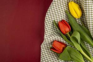Tulipanes sobre un paño a cuadros y fondo rojo.