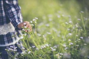 Primer plano de la mano de una niña tocando flores silvestres foto