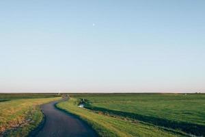 Road between green grassy fields photo
