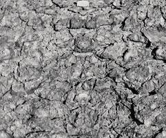 Fondo de textura de piedra abstracta