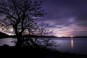 Silhouette of a tree near a body of water at sunset photo