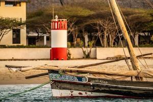 Paddleboat docked on the shore