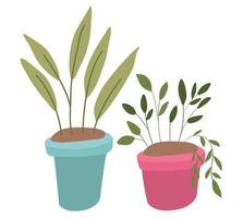 Isolated plants inside pots vector design