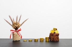 concepto de crecimiento financiero con monedas