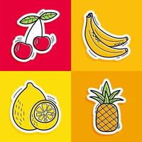 Stickers of hand drawn fruits in doodle style on pale background. Fruits collection.