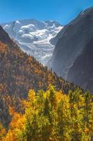 Autumn foliage and a snowcapped mountain