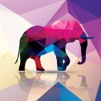Geometric polygonal elephant vector