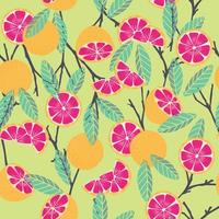 Fruit seamless pattern, grapefruit with branches and leaves vector