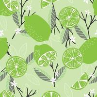 Fruit seamless pattern, lime with branches leaves and flowers vector