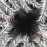 Tropical design with white palm leaves and plants on dark background vector