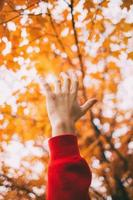 Hand against yellow leaves photo