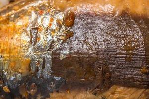 textura de piel de pescado foto